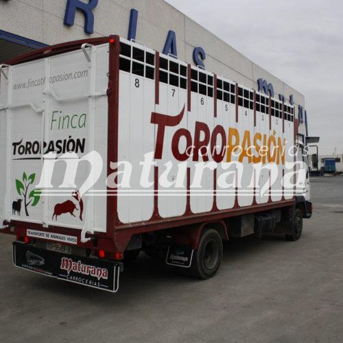 Toro Pasión